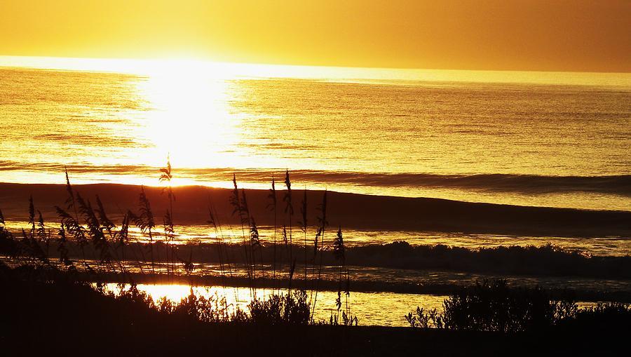 Golden Sunrise Photograph by Kim Zwick