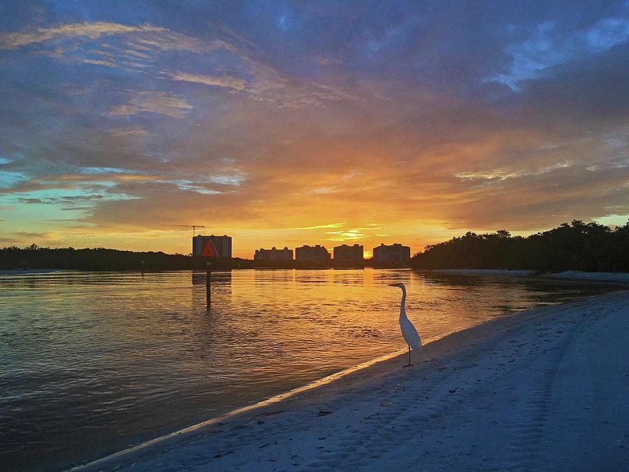 Golden Sunrise by Robb Stan