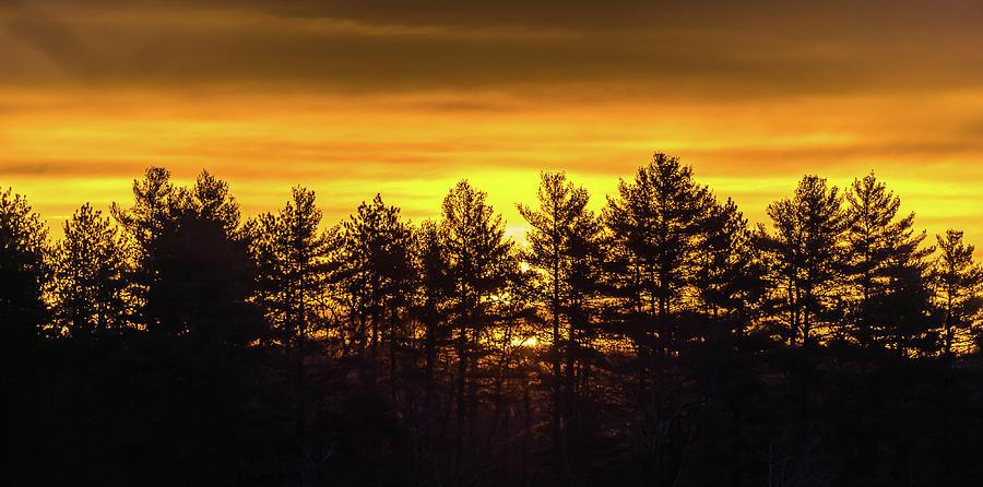 Golden Sunrise by Robert McKay Jones