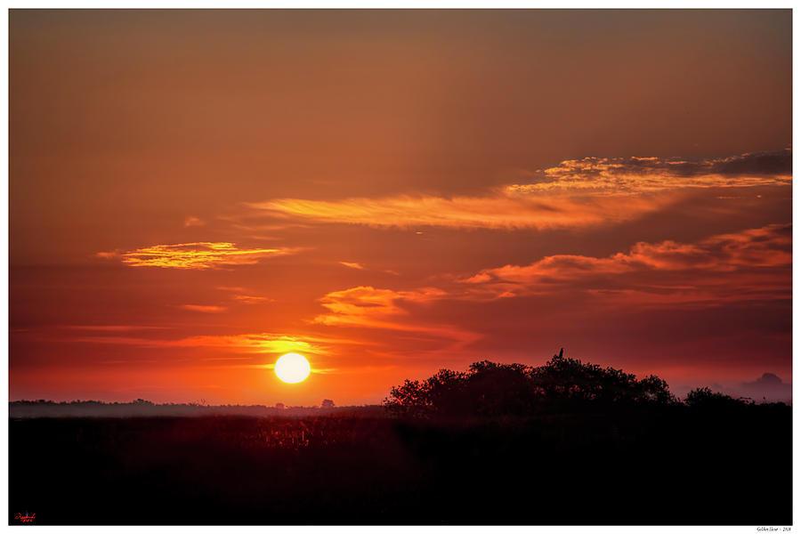 Golden Sunrise by Rogermike Wilson
