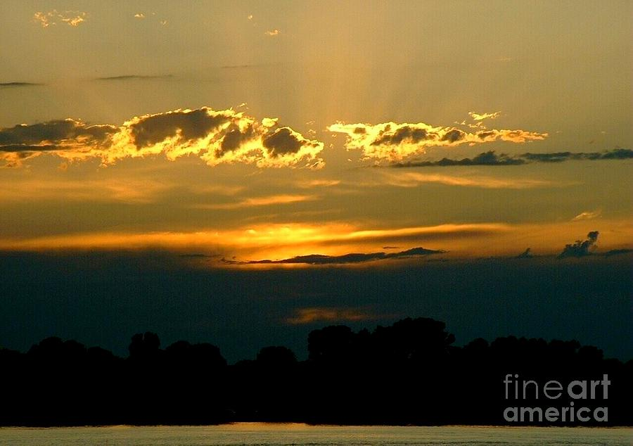 Landscape Photograph - Golden Sunset by D Nigon
