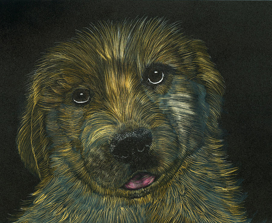 Puppy Mixed Media - Golden Sunshine by Jessica Kale