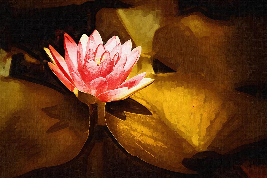 Pink Flower Digital Art - Golden Swamp Flower by Paul Bartoszek