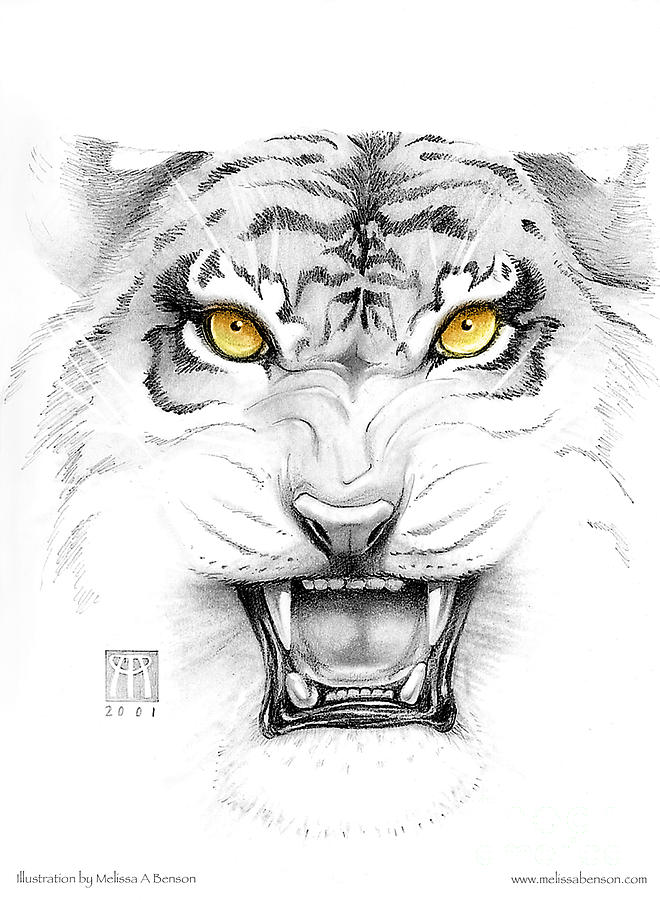 Amber Digital Art - Golden Tiger Eyes by Melissa A Benson