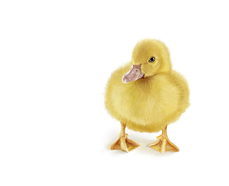 Duckling Digital Art - Golden Treasure by Bob Nolin