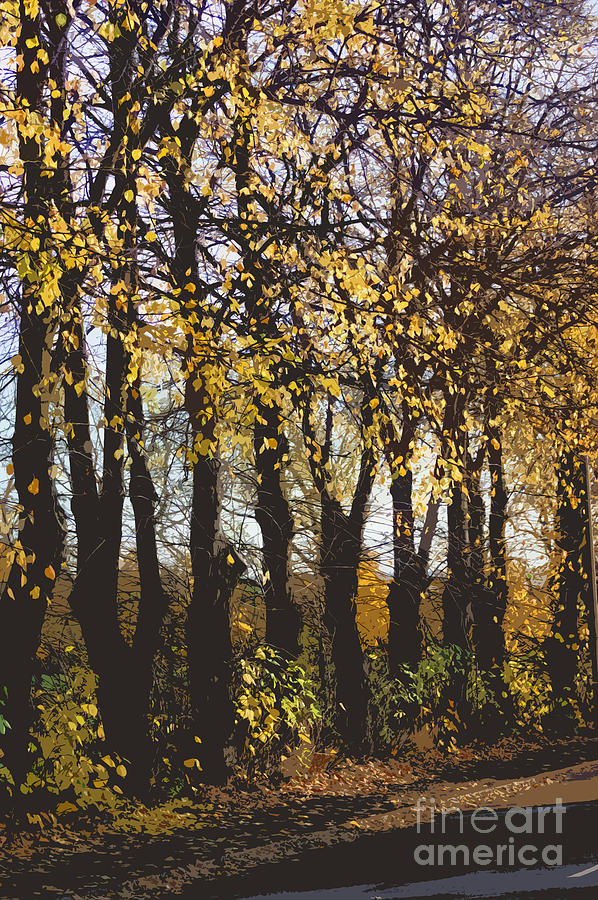 Abstract Digital Art - Golden Trees 1 by Carol Lynch