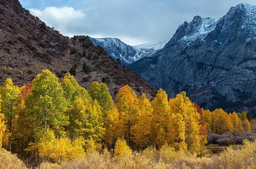 Golden Valley Photograph