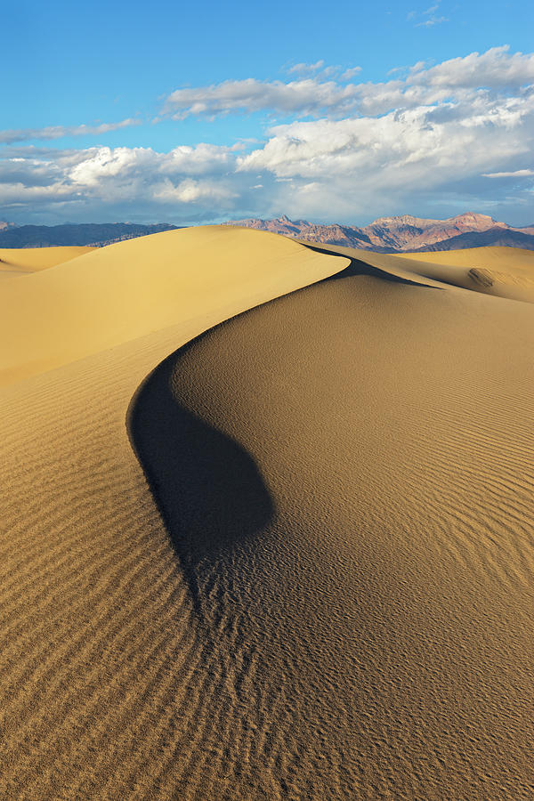 Death Valley - Golden Wave Photograph