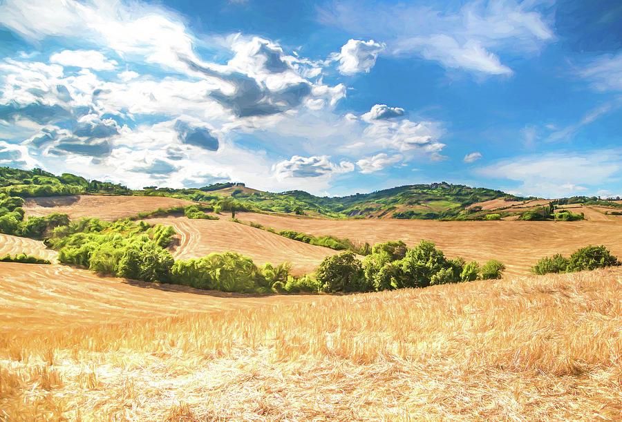 Golden Wheat Fields by Roy Pedersen