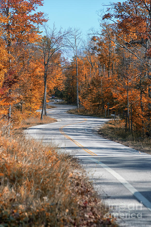 Door County Photograph - Golden Winding Road by Ever-Curious Photography