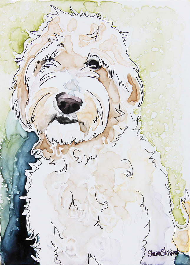 Goldendoodle Painting - Goldendoodle by Shaina Stinard