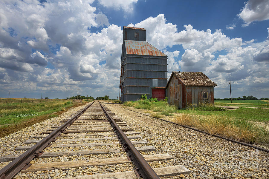 Railroad Track Photograph - Goldenrod by Jill Van Doren Rolo