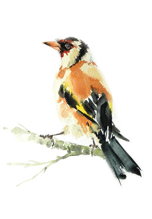 Goldfinch Bird Painting - Goldfinch Bird  by Pornthep Piriyasoranant