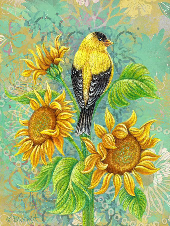 Goldfinch on Sunflower by Beth Wright