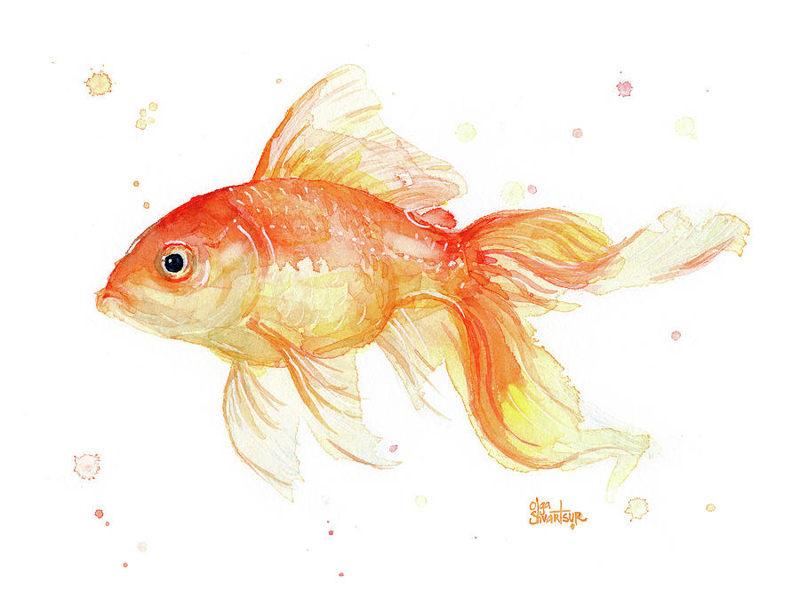 Goldfish Painting Watercolor Painting by Olga Shvartsur