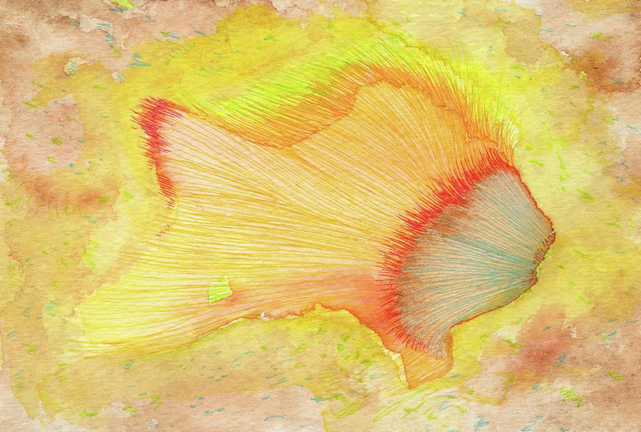 Fish Drawing - Goldfish - #ss16dw039 by Satomi Sugimoto
