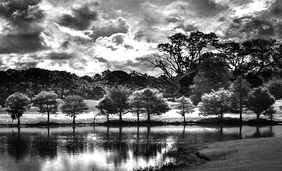Golf Course Black And White Photograph By Michael Forte