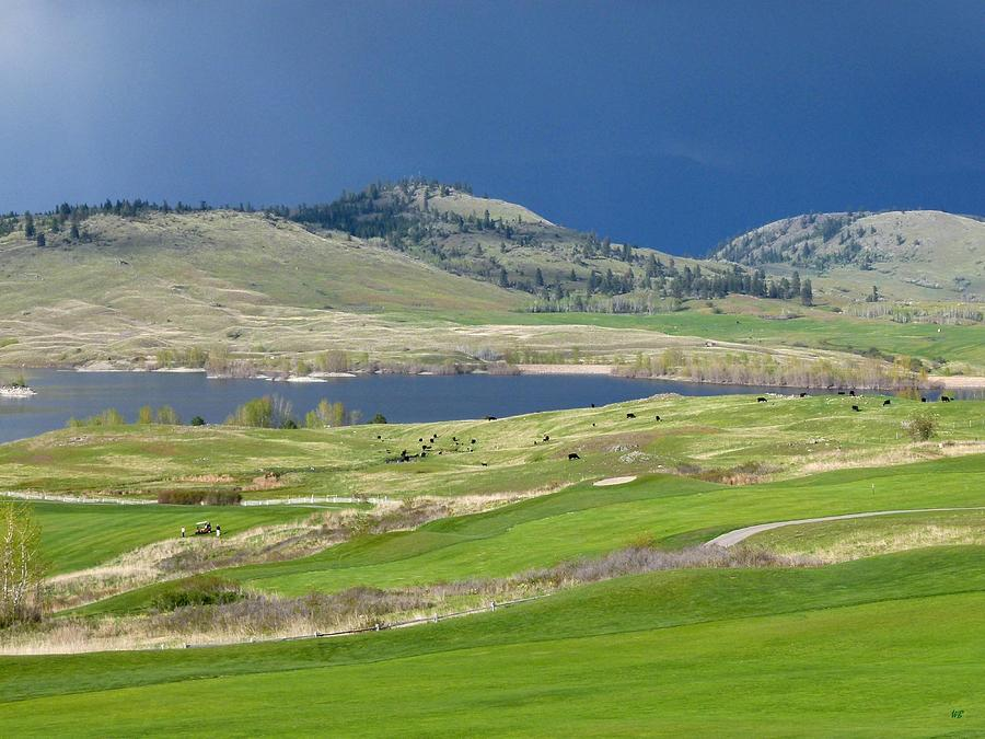 Golfing Photograph - Golfing And Grazing by Will Borden