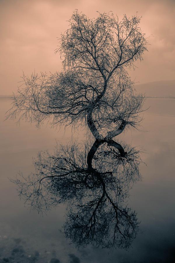 Landscape Photograph - Golyazi by Emre SAMANCI