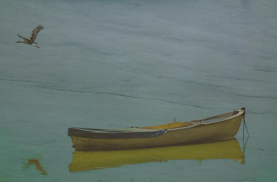 Golyazi, Turkey - Rowboat and Crane by Mark Forte