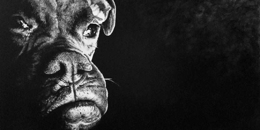 Good Dog by Scott Robinson