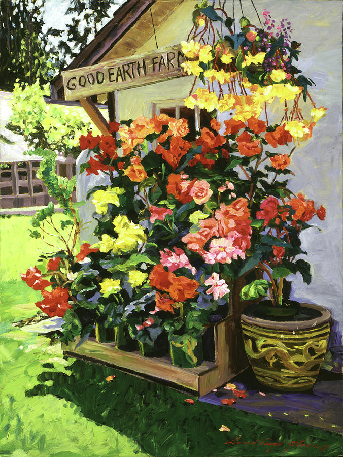 Begonias Painting - Good Earth Farm by David Lloyd Glover