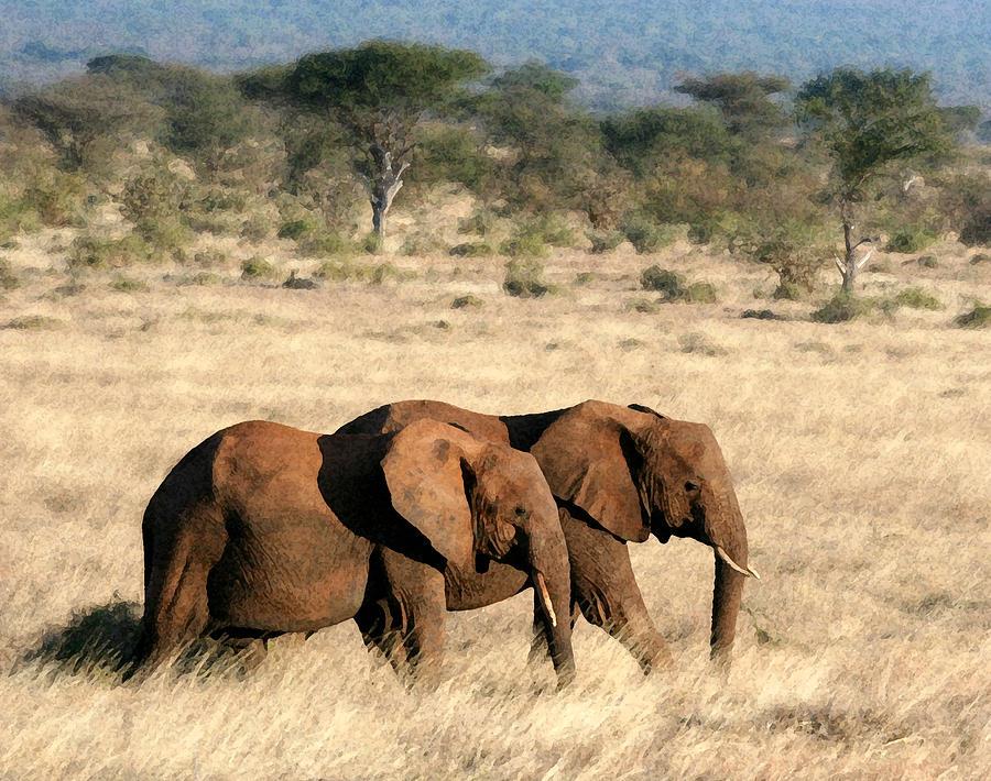 Elephants Photograph - Good Friends by Nancy D Hall