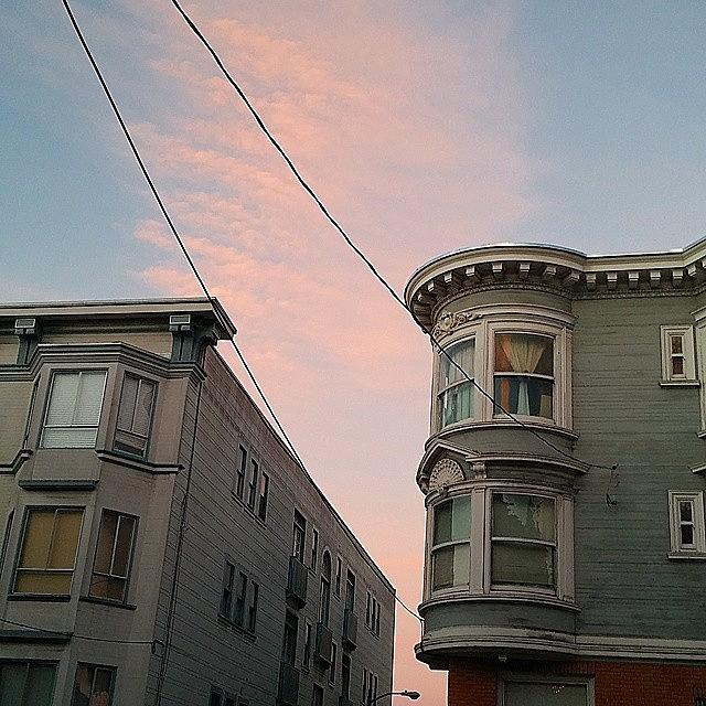 Sanfrancisco Photograph - Cotton Candy Morning by Felicia Zurich-Gallagher