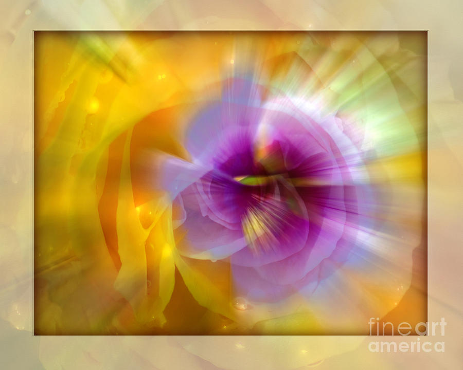 Flower Photograph - Good Morning Sunshine by Chuck Brittenham