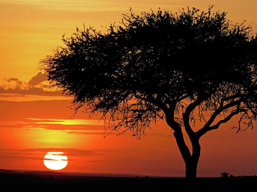 Good Night, Maasai Mara by Juergen Weiss