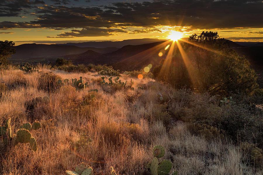 Arizona Photograph - Goodnight Ray by Jen Manganello