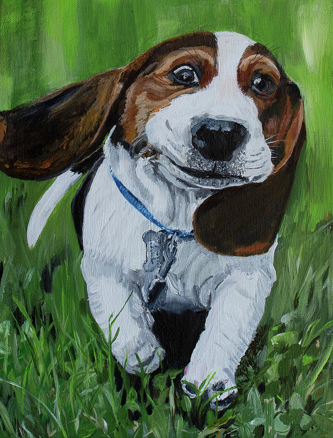 Goofy Basset Hound Pup by MKD Lincoln