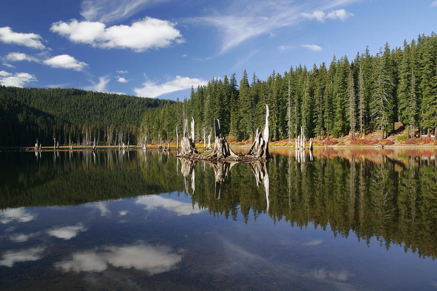 Goose Lake Photograph - Goose Lake by Wes and Dotty Weber