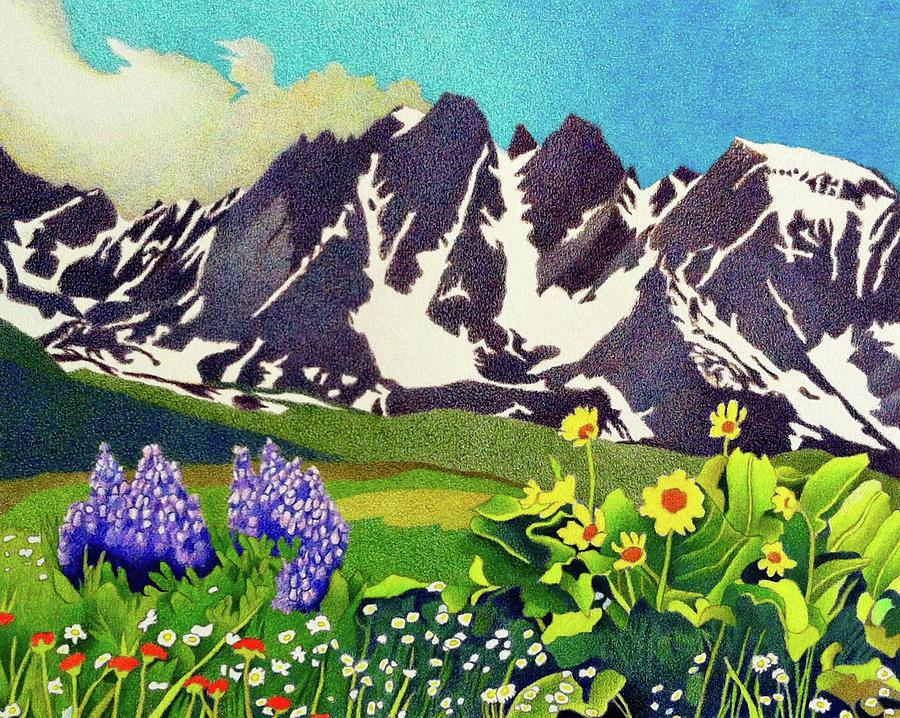 Drawing Drawing - Gore Range Wildflowers by Dan Miller