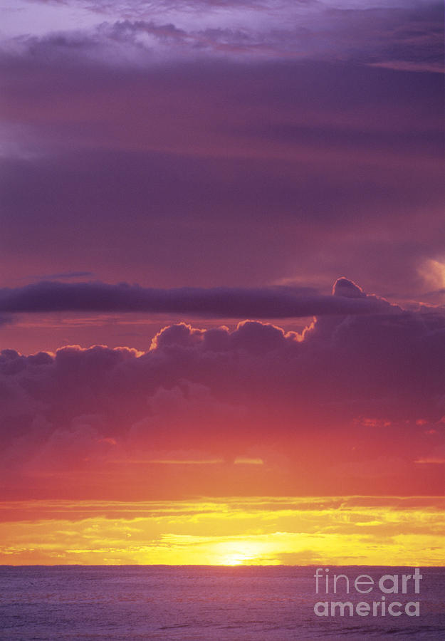 Afternoon Photograph - Gorgeous Sunset by Carl Shaneff - Printscapes