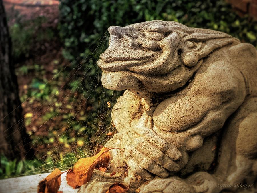 Gargoyle Photograph   Gothic Garden Gargoyle Statue Spider Webs By Melissa  Bittinger
