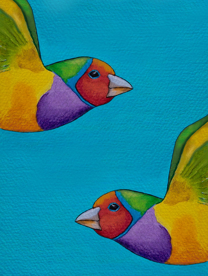 Gouldian Finch Painting - Gouldian Finches by Robert Lacy