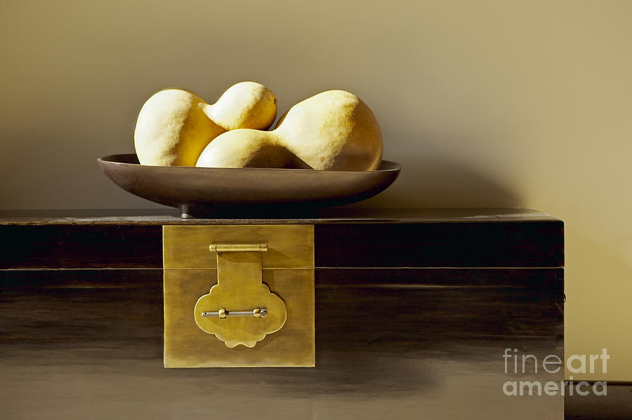 Beige Photograph - Gourds Still Life I by Kyle Rothenborg - Printscapes