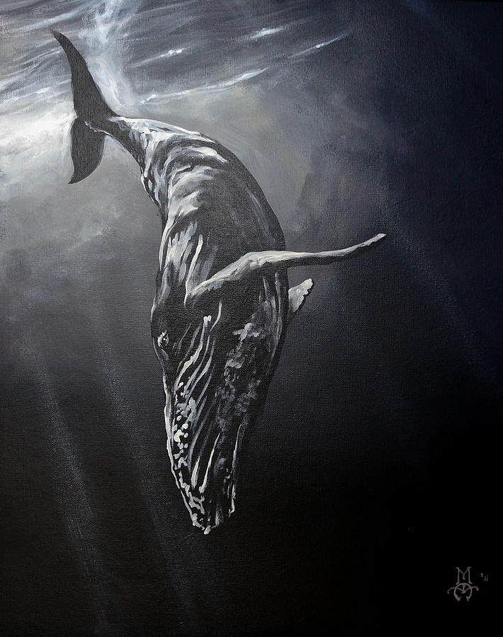 Whale Painting - Graceful Descent by Marco Antonio Aguilar