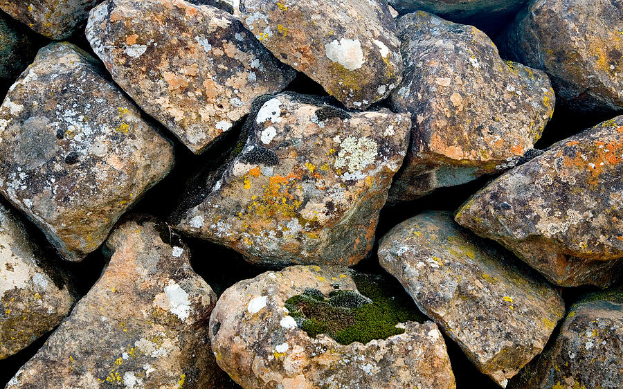 Rocks Photograph - Gracefully Aging by Charlie Osborn