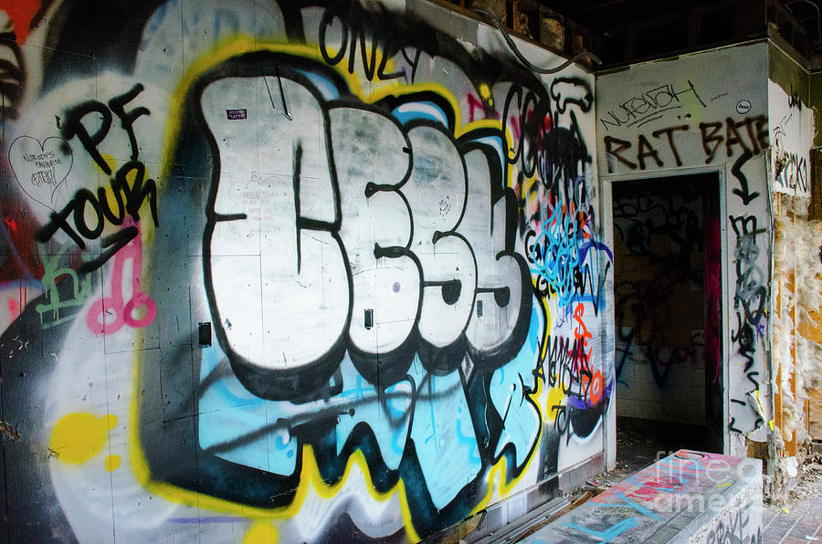 Graffiti Photograph - Graffiti 4 by Bob Christopher