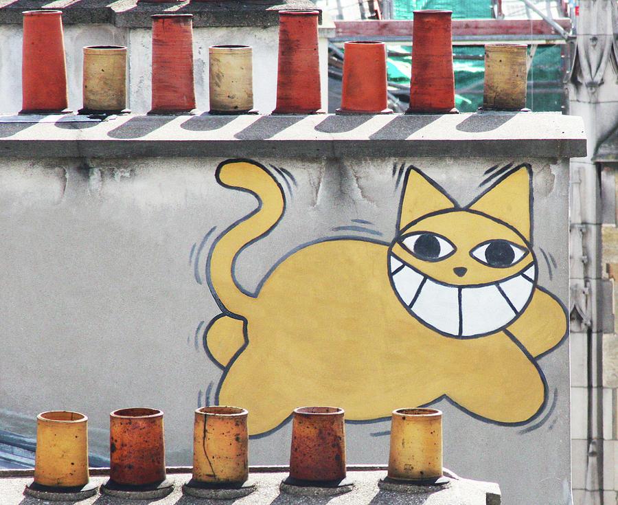 Graffiti Cat by Mary Castellan