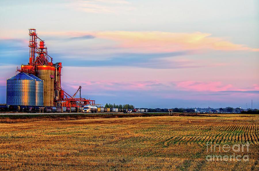 Grain Elevator At Sunset Photograph