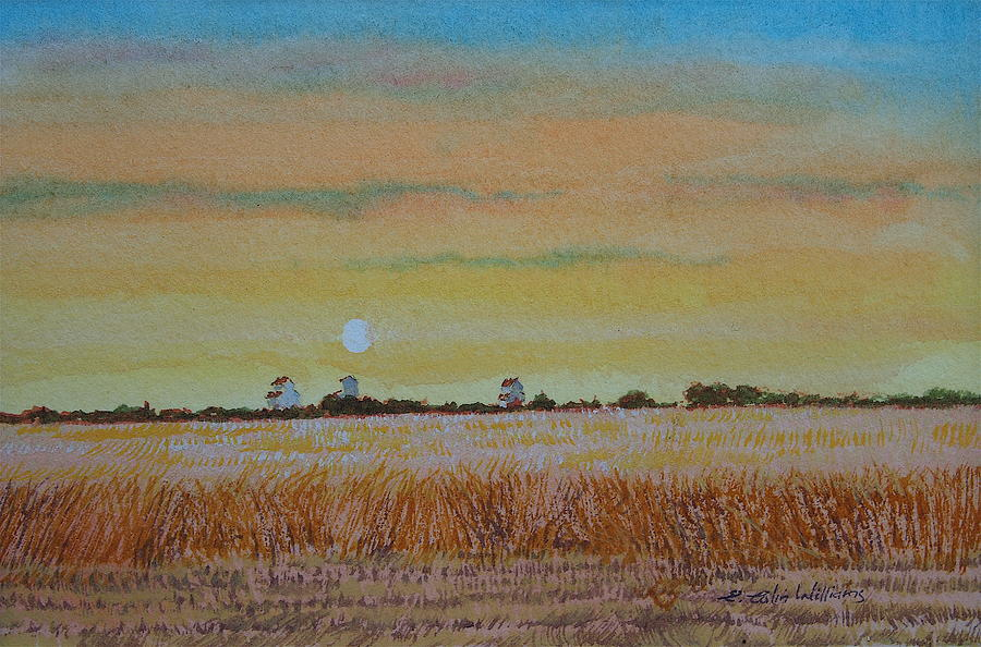 Grain Elevators - Late Afternoon by E Colin Williams ARCA