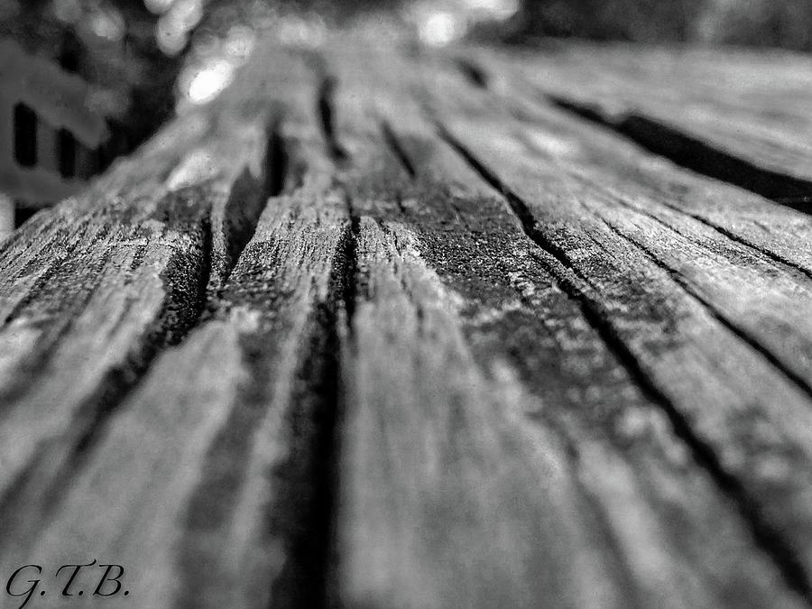 Wood Photograph - Grains Of Wood by Garrett Blum