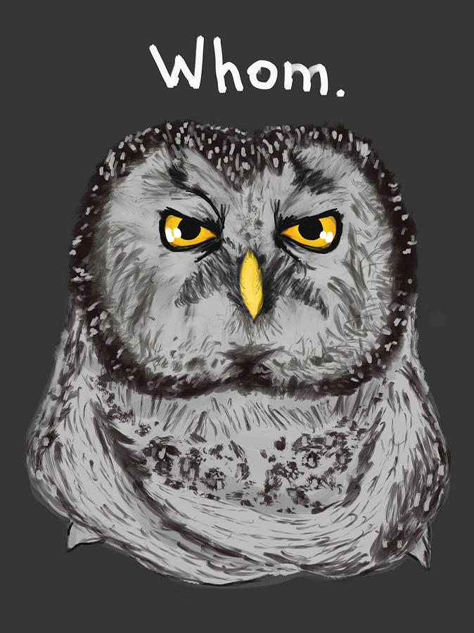Owl Painting - Grammar Owl Is Judging You by Dan Pearce