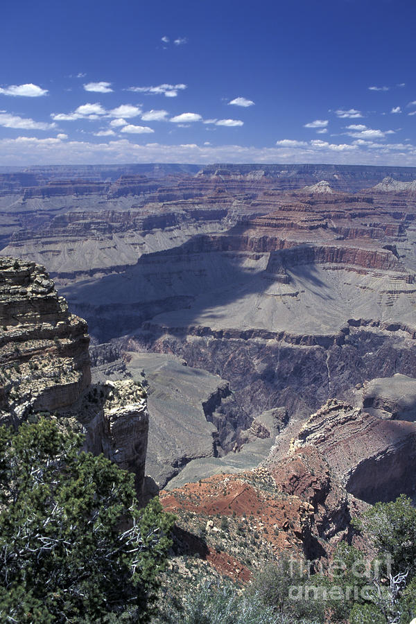 Arizona Photograph - Grand Canyon 5 by Stan and Anne Foster