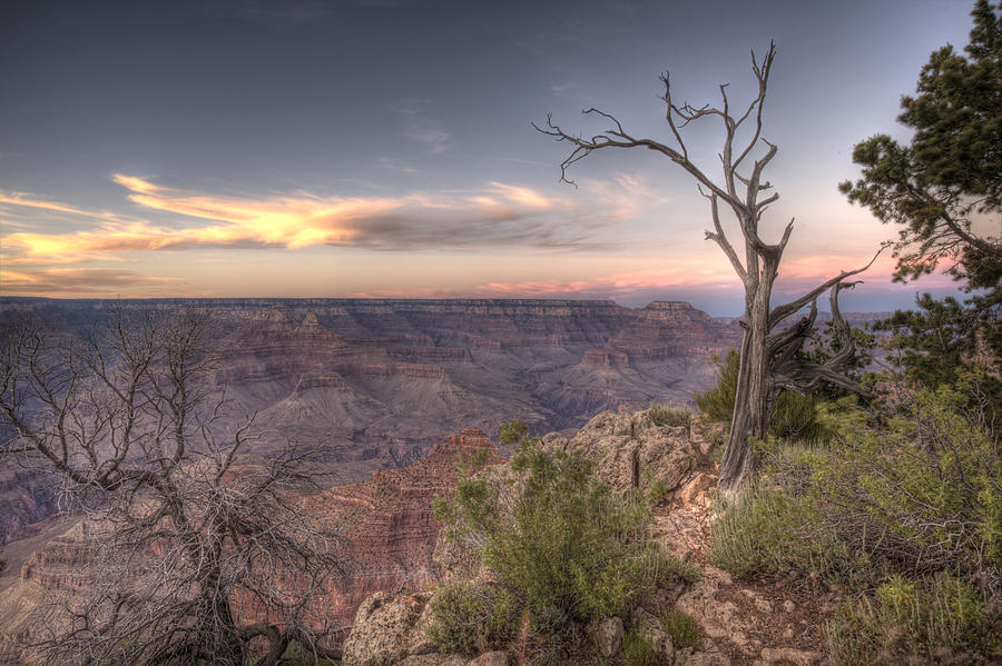 Grand Canyon 991 by Michael Fryd