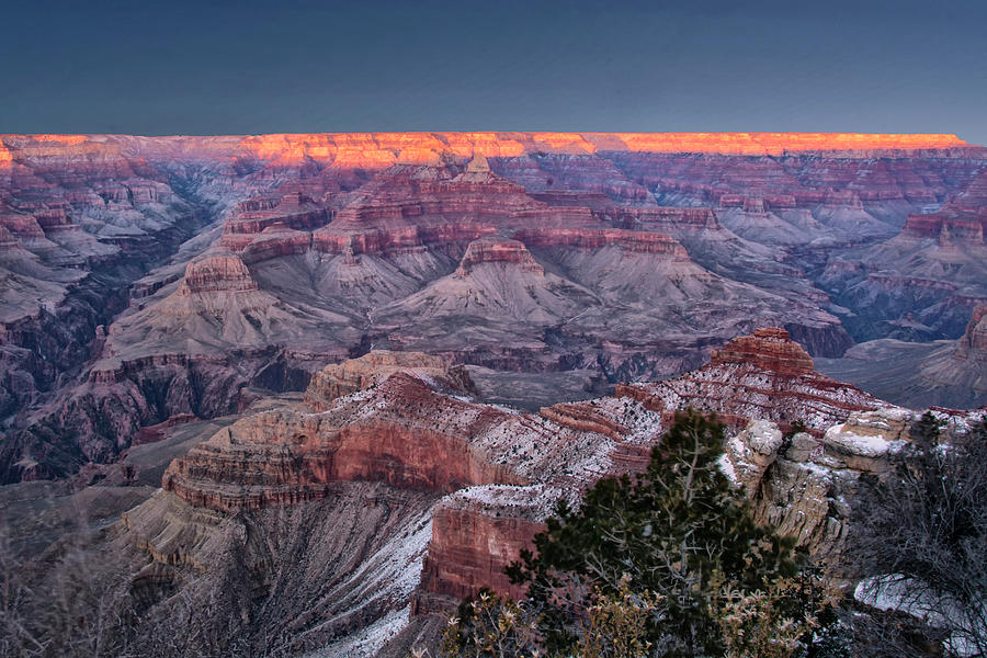 Arizona Photograph - Grand Canyon Blue Hour by Gej Jones