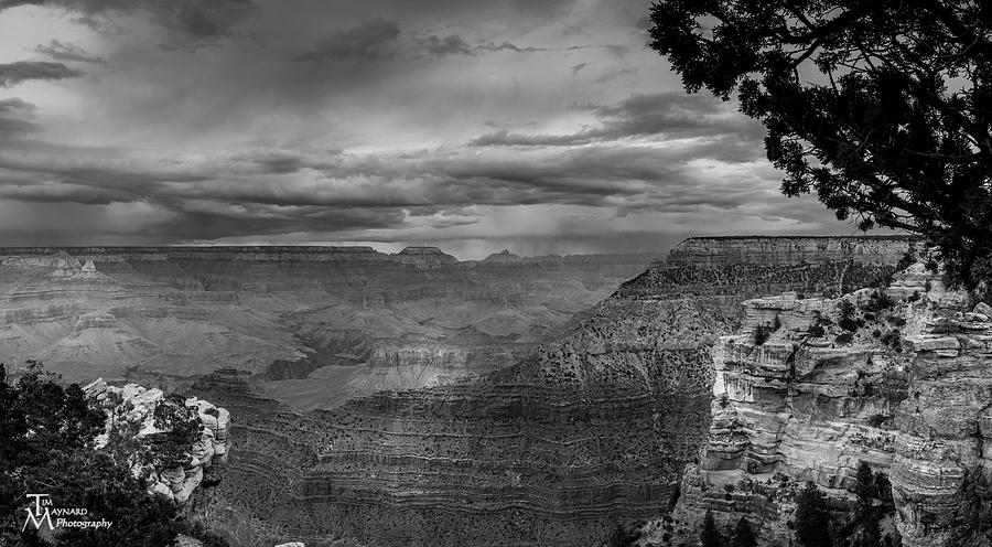 Grand Canyon Photograph - Grand Canyon Bw by Tim Maynard